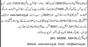 BEEF Scholarship Application form 2019-20
